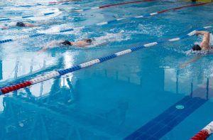 Соревнования по плаванию провели в районе. Фото: сайт мэра Москвы