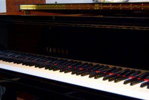 Концерт фортепианной музыки состоится в Музее Скрябина. Фото: Никита Нестеров