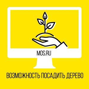 Москвичи смогут посадить дерево с помощью портала mos.ru
