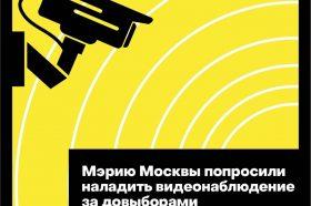Мэрию Москвы попросили организовать видеонаблюдение на довыборах в сентябре