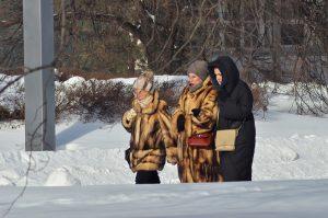 Сотрудники Дома Лосева организуют пешеходную экскурсию. Фото: Анна Быкова