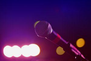 Вокальный концерт организуют в Доме-музее Марины Цветаевой. Фото: pixabay.com
